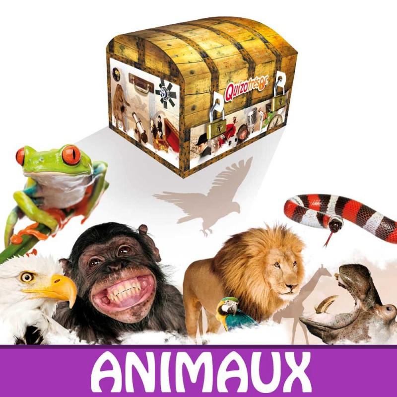 Kit physique Chasse au trésor Animaux 6-8 ans